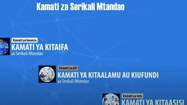 Kamati za Utekelezaji wa Serikali Mtanda...